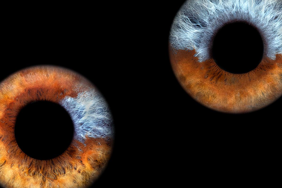 Keine Fake - ein echtes Augenpaar