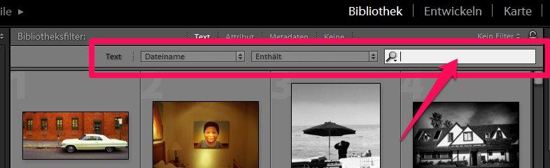 Dateiname in Lightroom eingeben